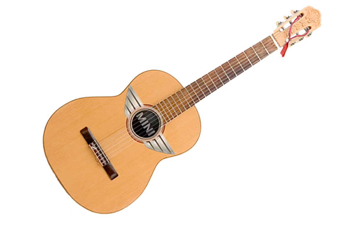 MINI guitar cover behance.png