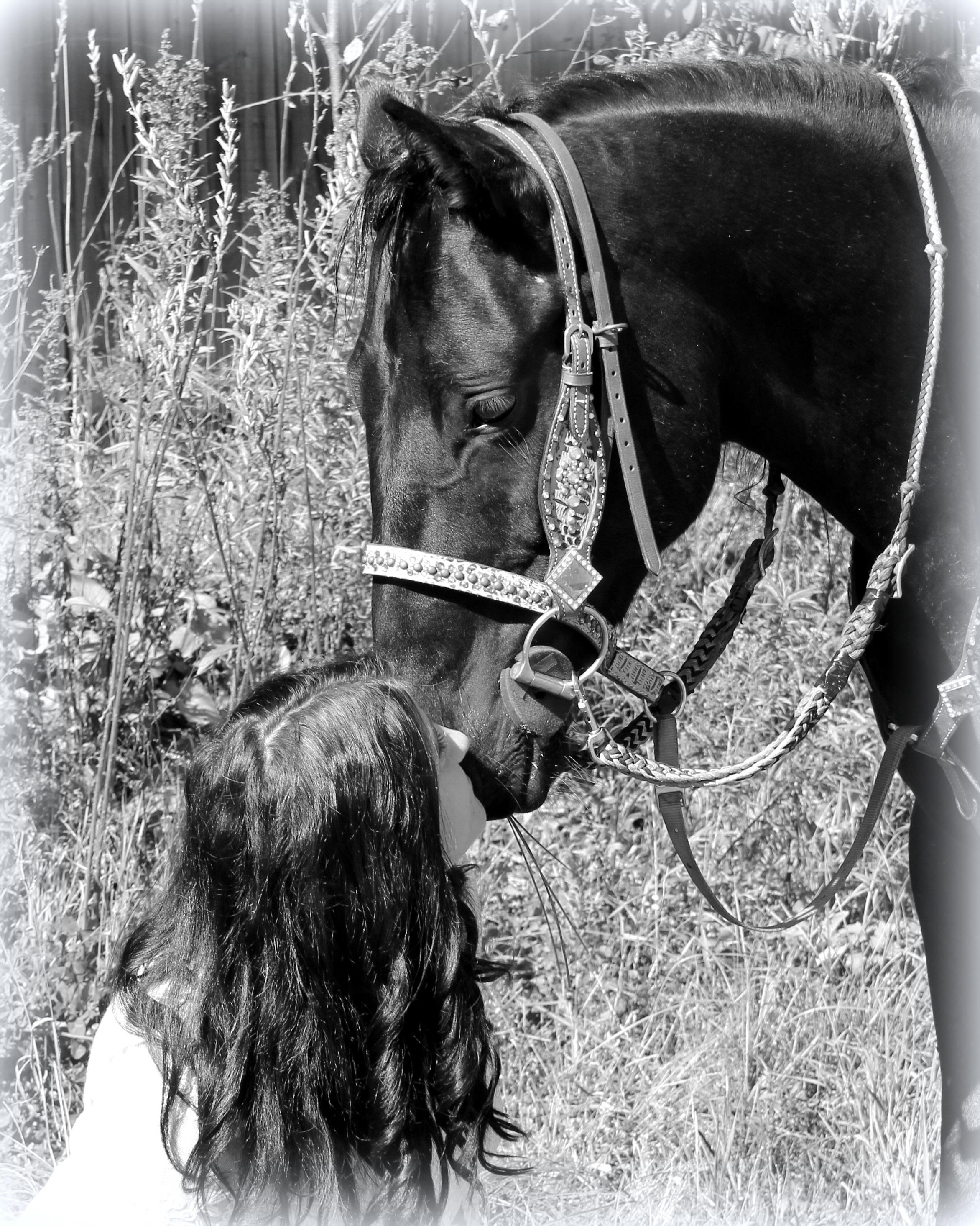 Kelly communication avec cheval.jpg