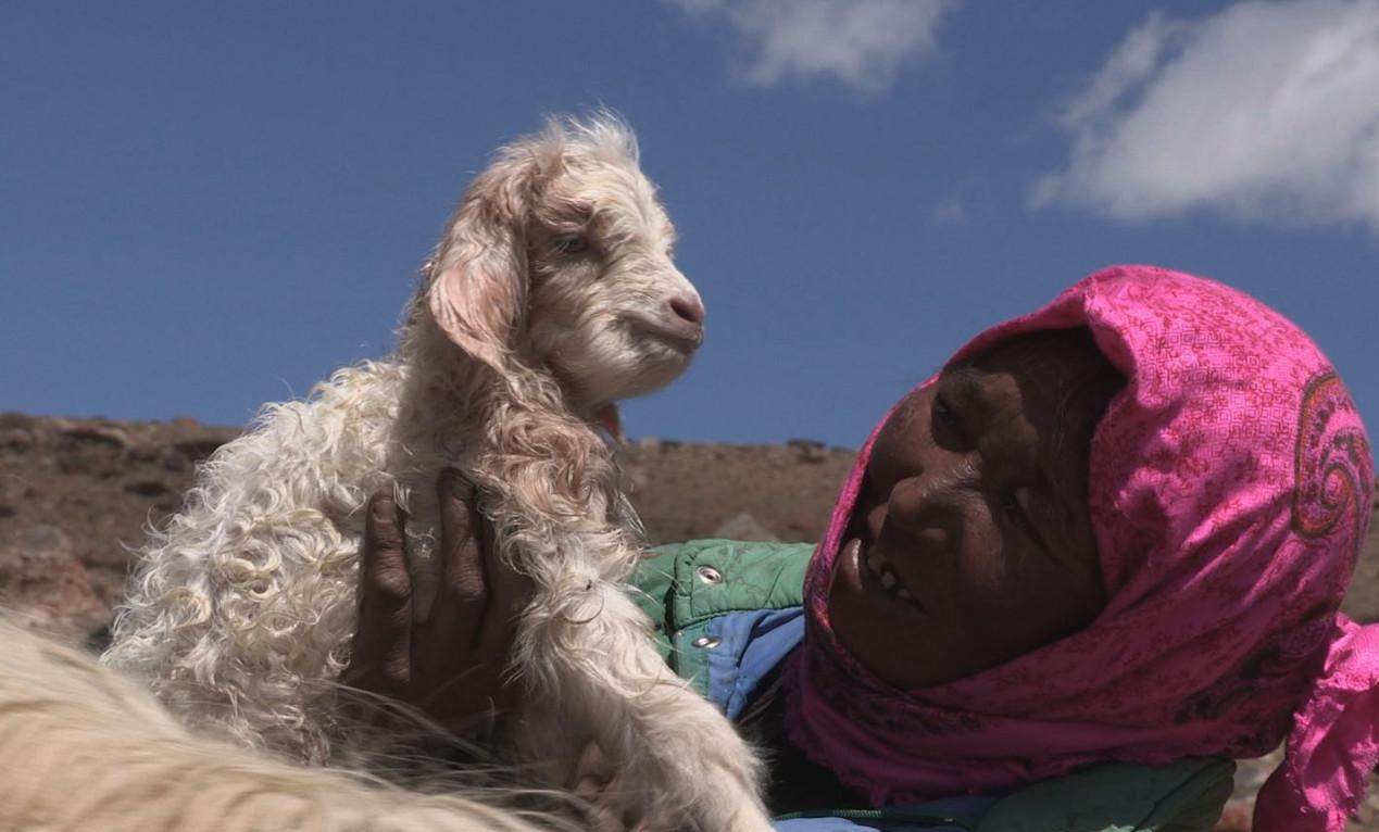 Shepherdess.jpg