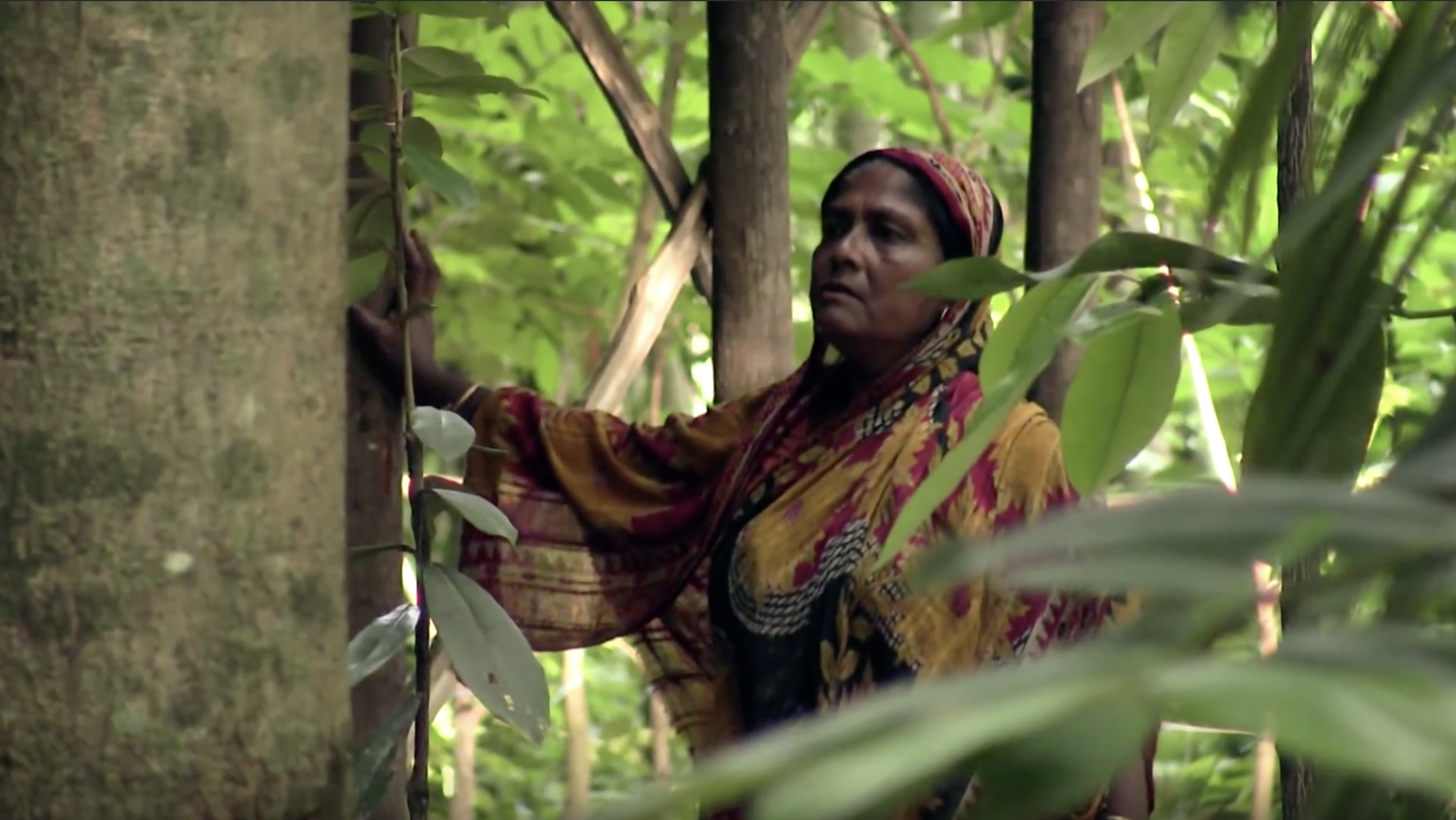 THE POISON THORN - Documentary Short | Bangladesh | Bengali | 2015 | Farzana Boby | 41 min