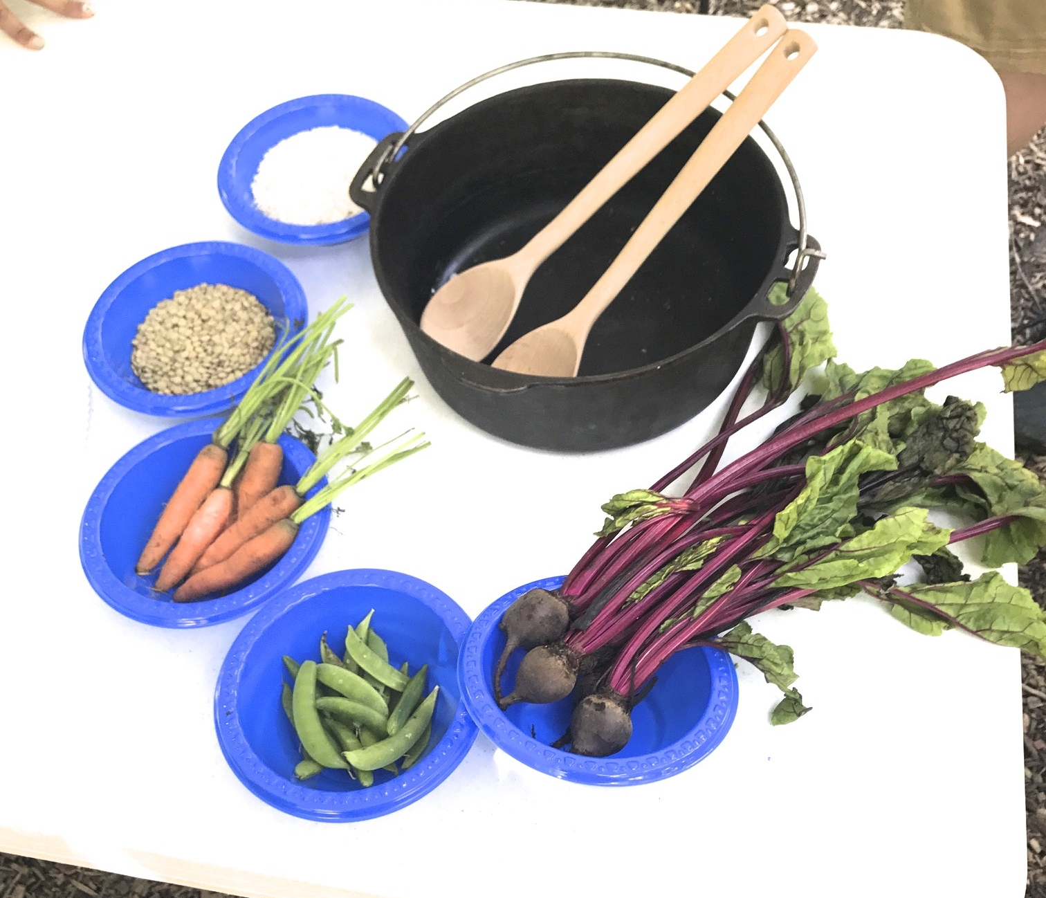 Typical Weekly Food Allotment for Refugees