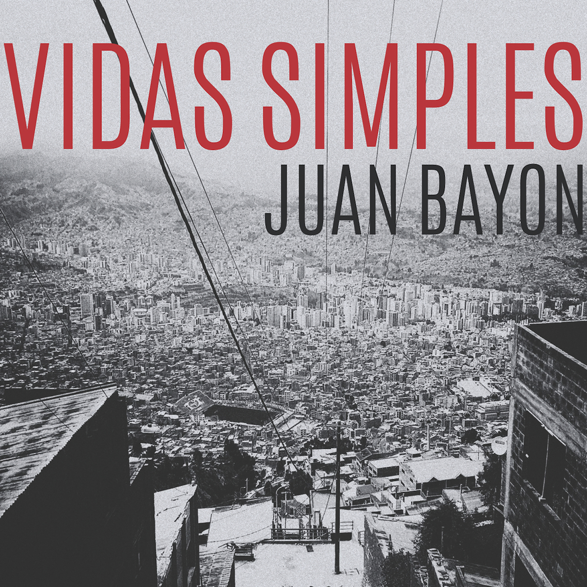 Vidas_Simples_Juan_Bayon_COVERsm.jpg
