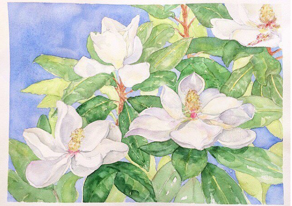 Baton Rouge Magnolias by Carrie