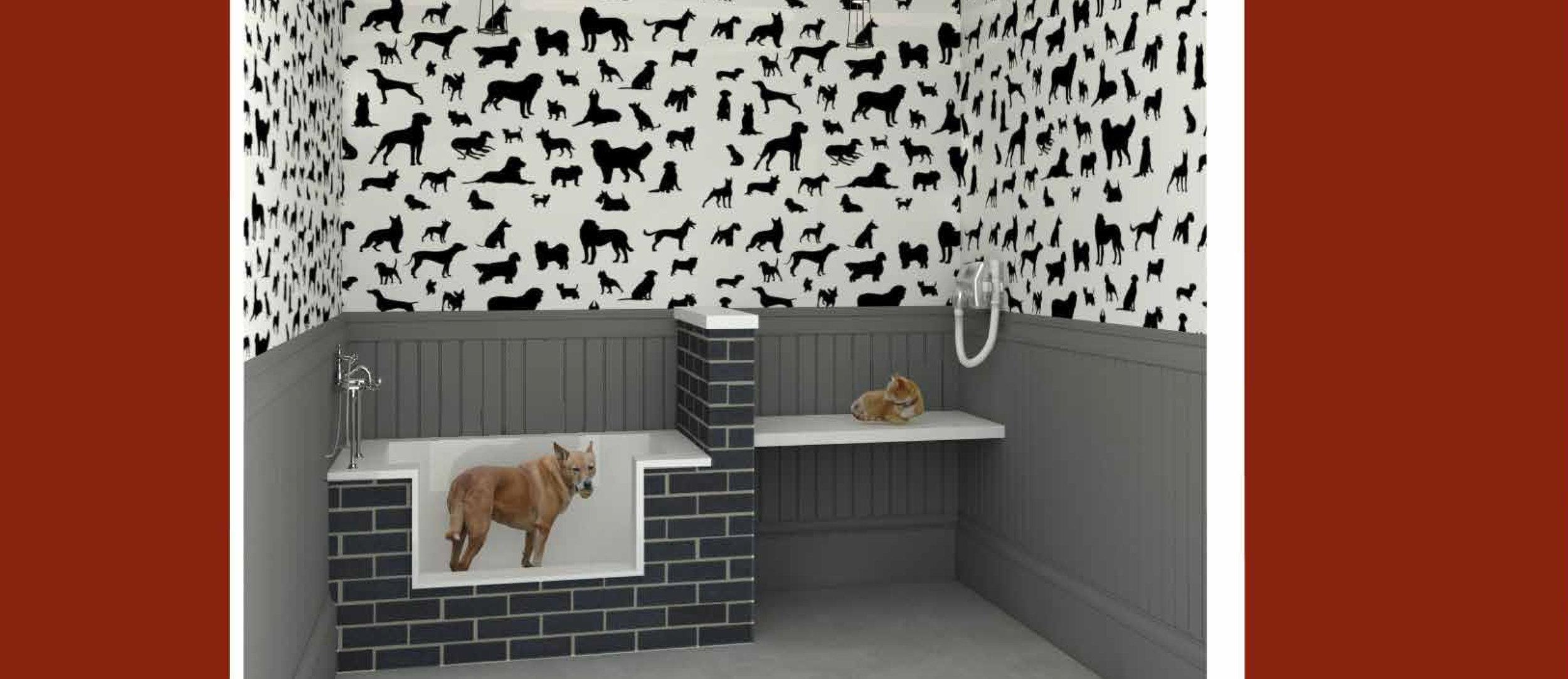 Pet Washing Station