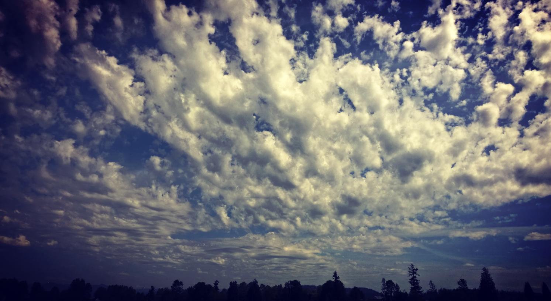 Snohomish sky
