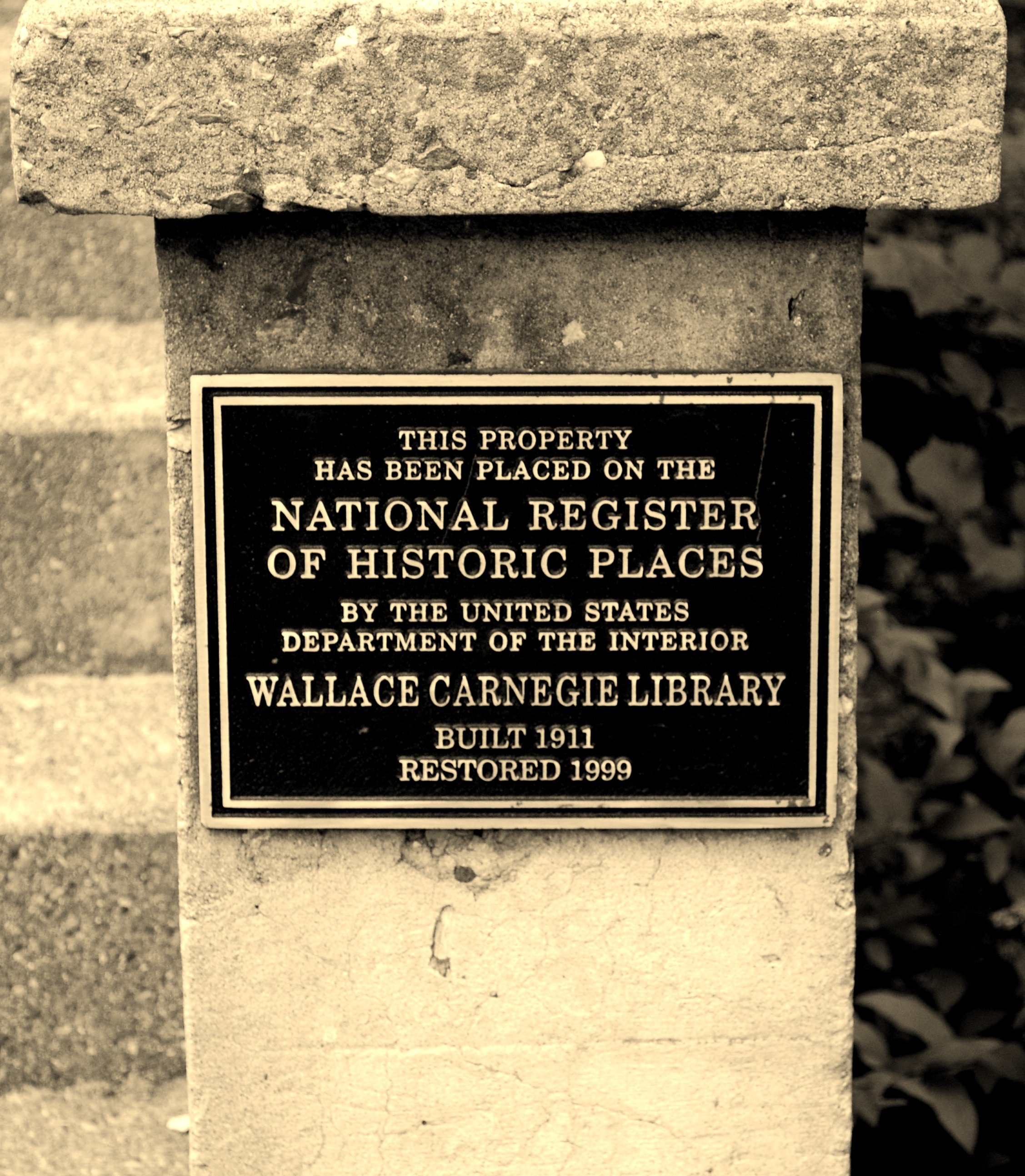 Wallace Carnegie Library