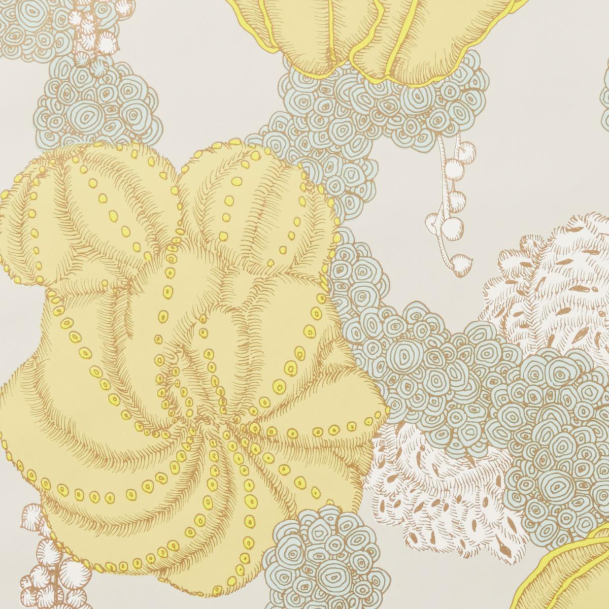 Succulent - Yellow