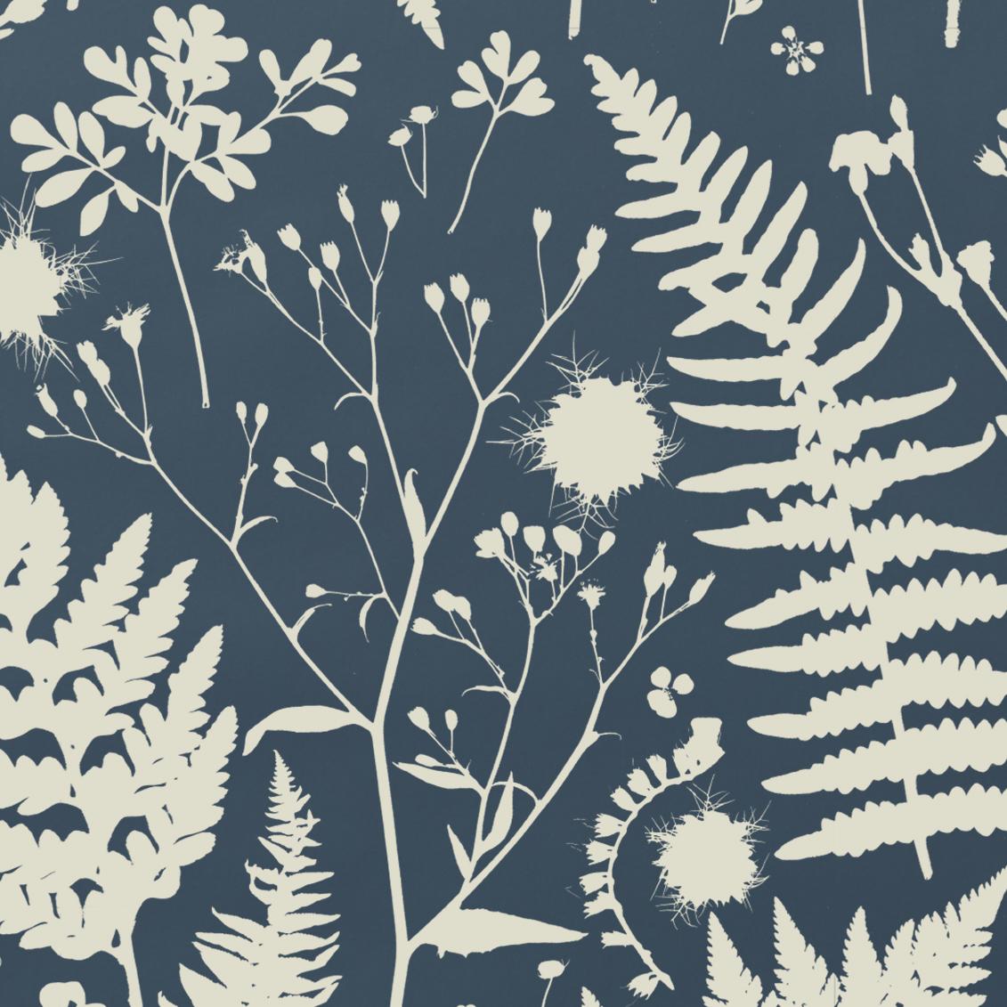 Forage –Parchment on Blue