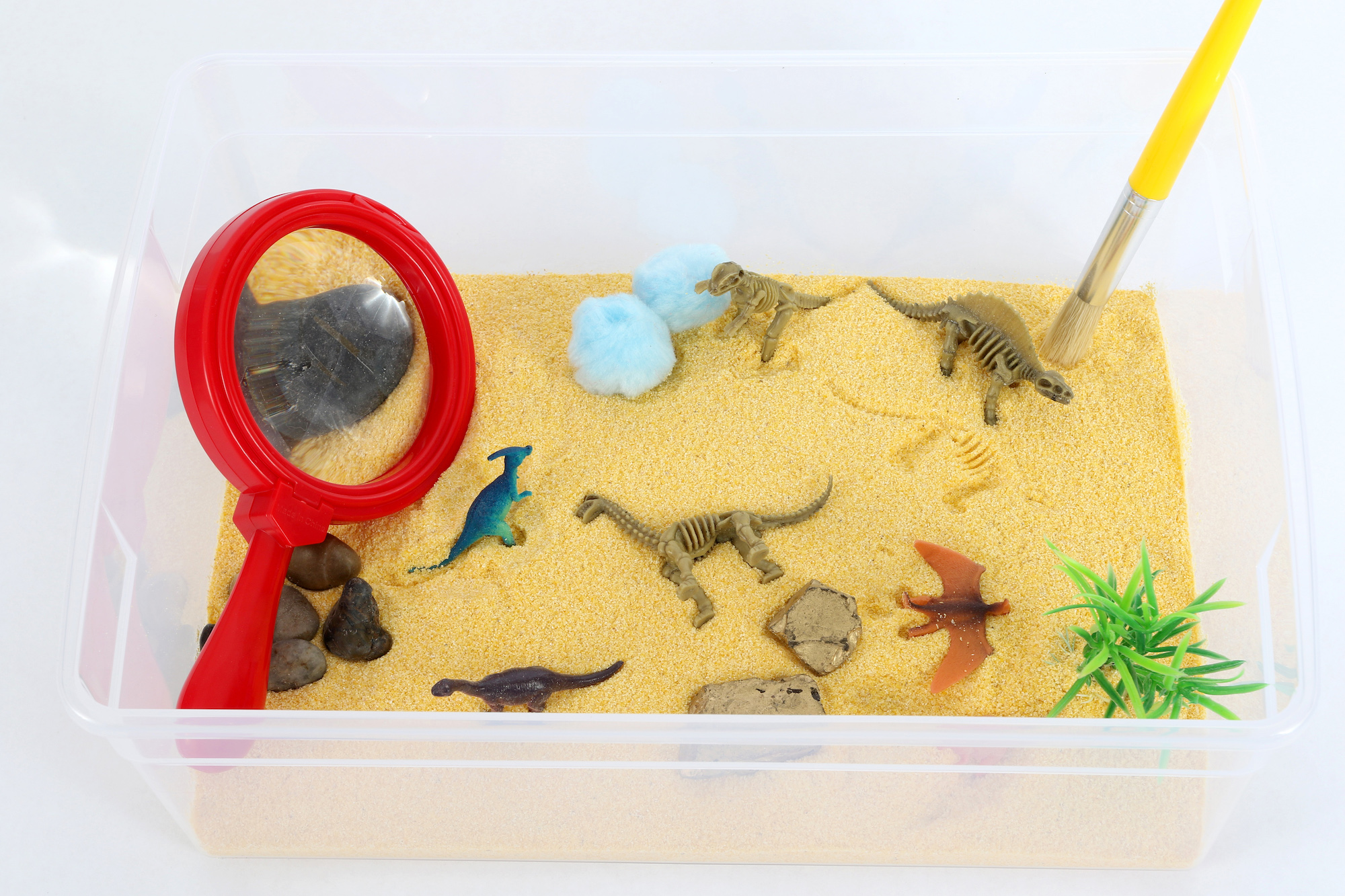 Dinosaur Excavation Sensory Bin copy.jpg