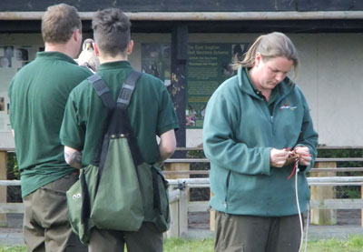 The senior falconers prepare to put trainee Harry through his paces