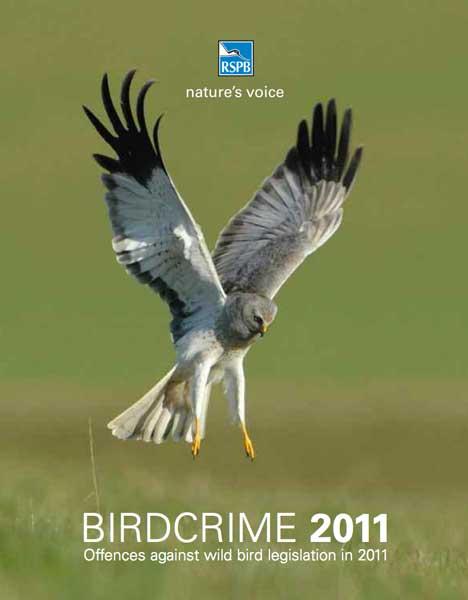 rspb-bird-crime-l.jpg