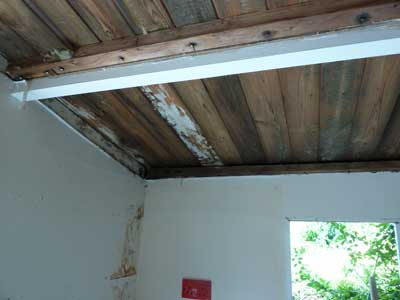 Rotting walls and roof structures have meant that our bird hospital was due for a major refurbishment