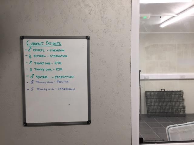 In-patients list