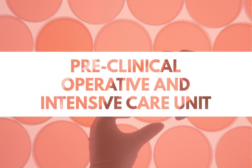 ServicesSlider-PreClinical-ICU.png
