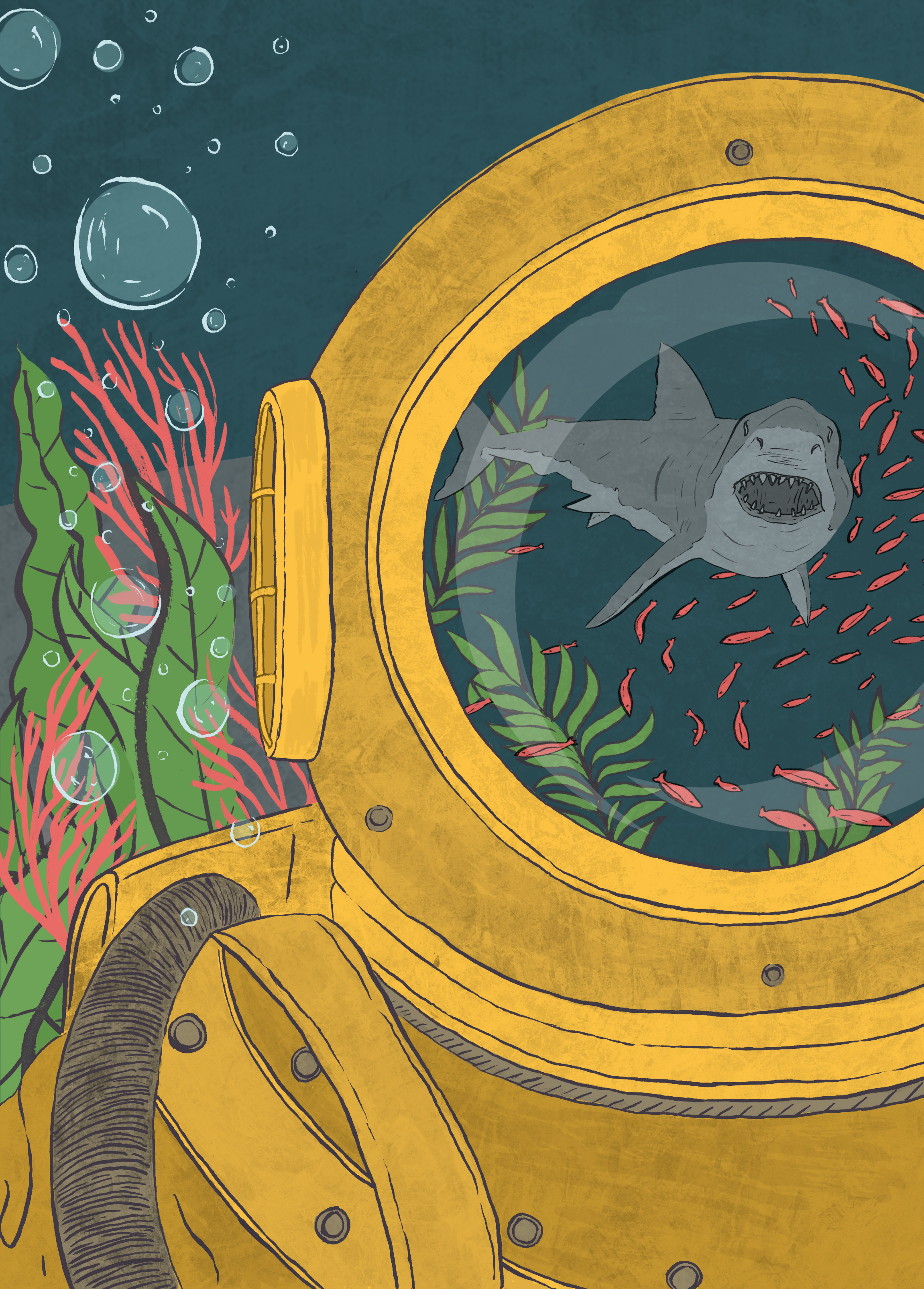 Shark attack! - The final illustration is of Captain Nemo's doomed diver, the moment before the shark attack. With the reflection of his helmet showing his impending doom.