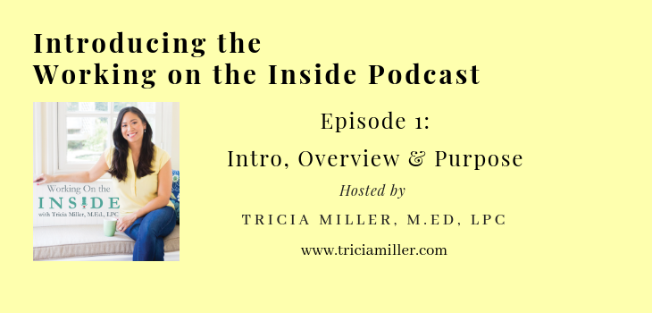 Episode 1: Working on the Inside Podcast