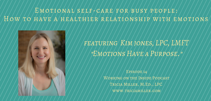 Episode 15: Emotional Self-Care for the Busy Person