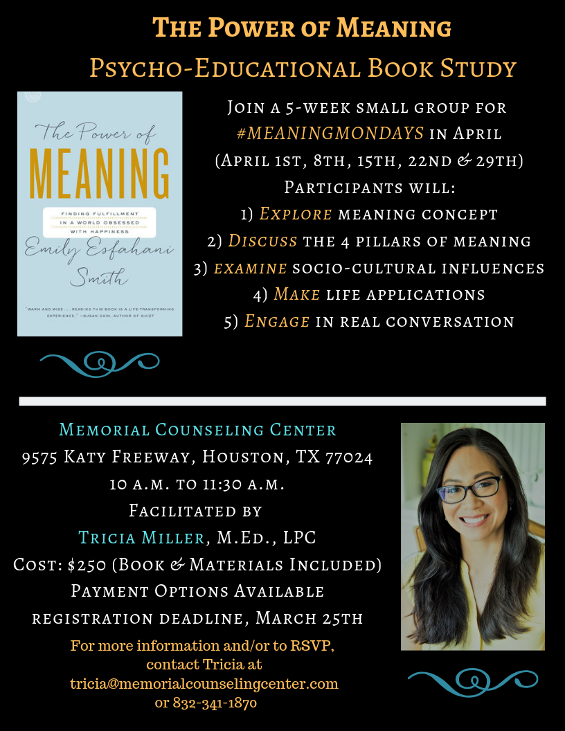 The Power of Meaning Book Flyer Final (April 2019).png