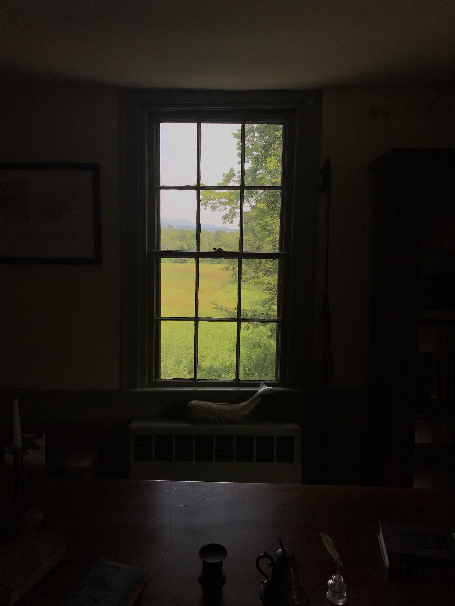 This was Herman Melville's view while writing  Moby Dick . In the distance you can see Mount Greylock.