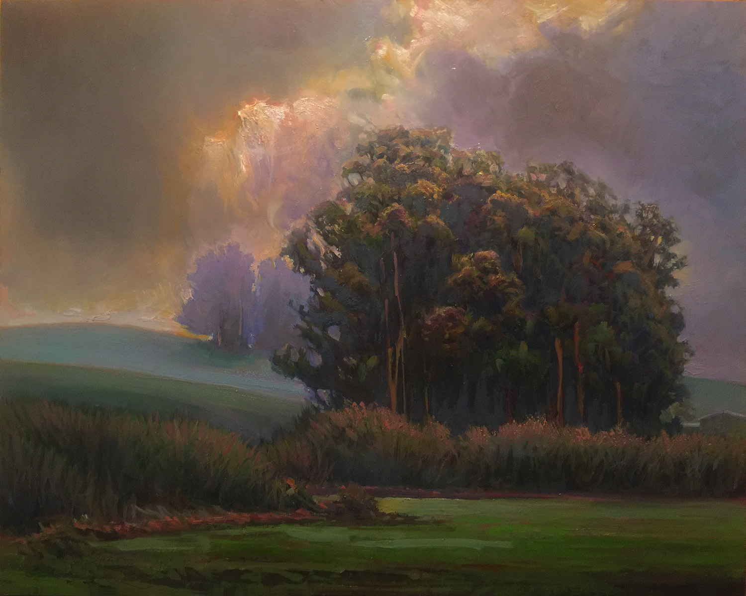"""TWO ROCK VALLEY   16"""" x 20"""" oil on panel"""