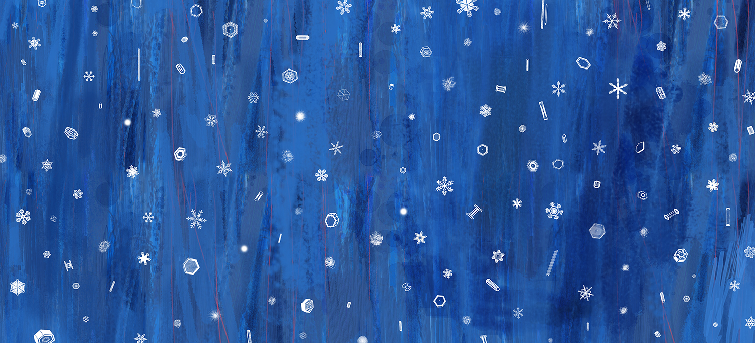 TheSnowShoe_endpaper_CarolynFisher_illustration_children'sbook_1500pxW.jpg