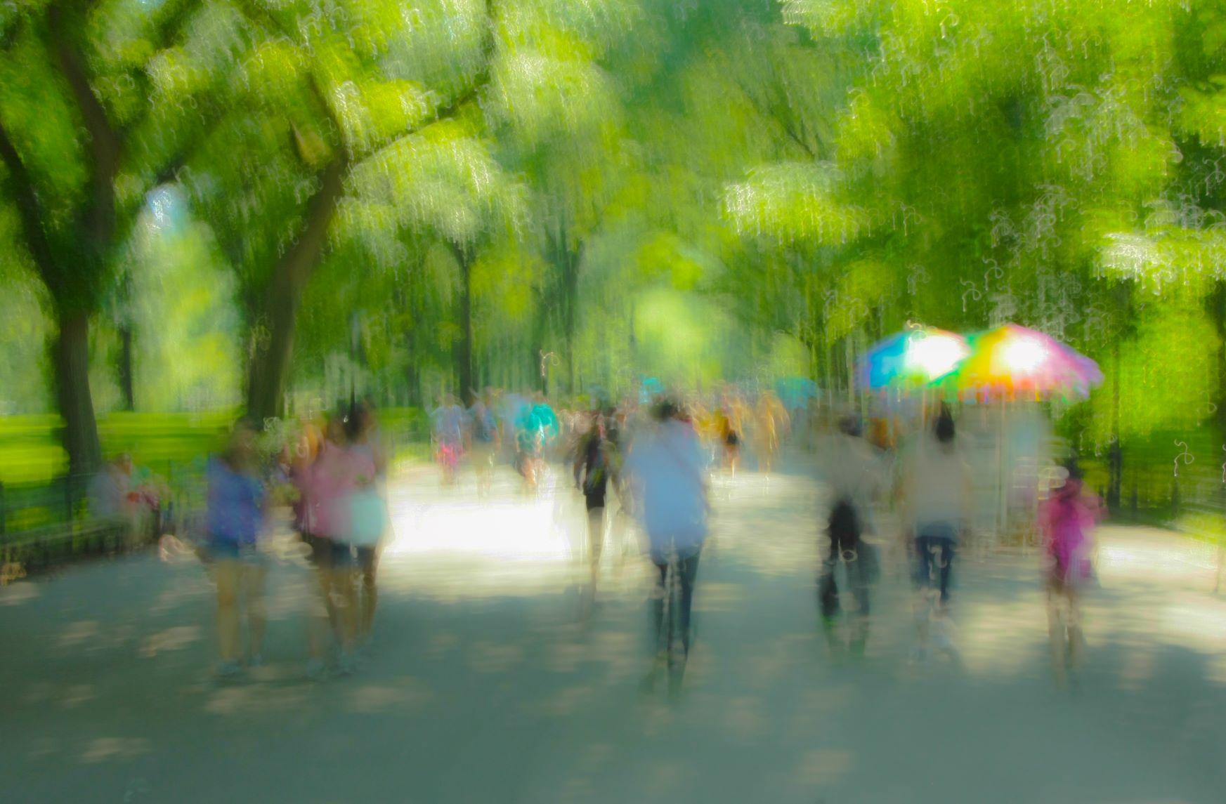Central Park 2, New York.jpg