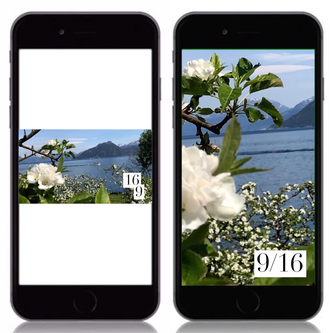 Høyde og bredde?  Kan vi ta et vertikalt utsnitt av et horisontalt bilde, eller blir kvaliteten for dårlig?  Det horisontale utsnittet strekkes for å fylle skjermen på telefonen og blir litt grøtete i de små detaljene.