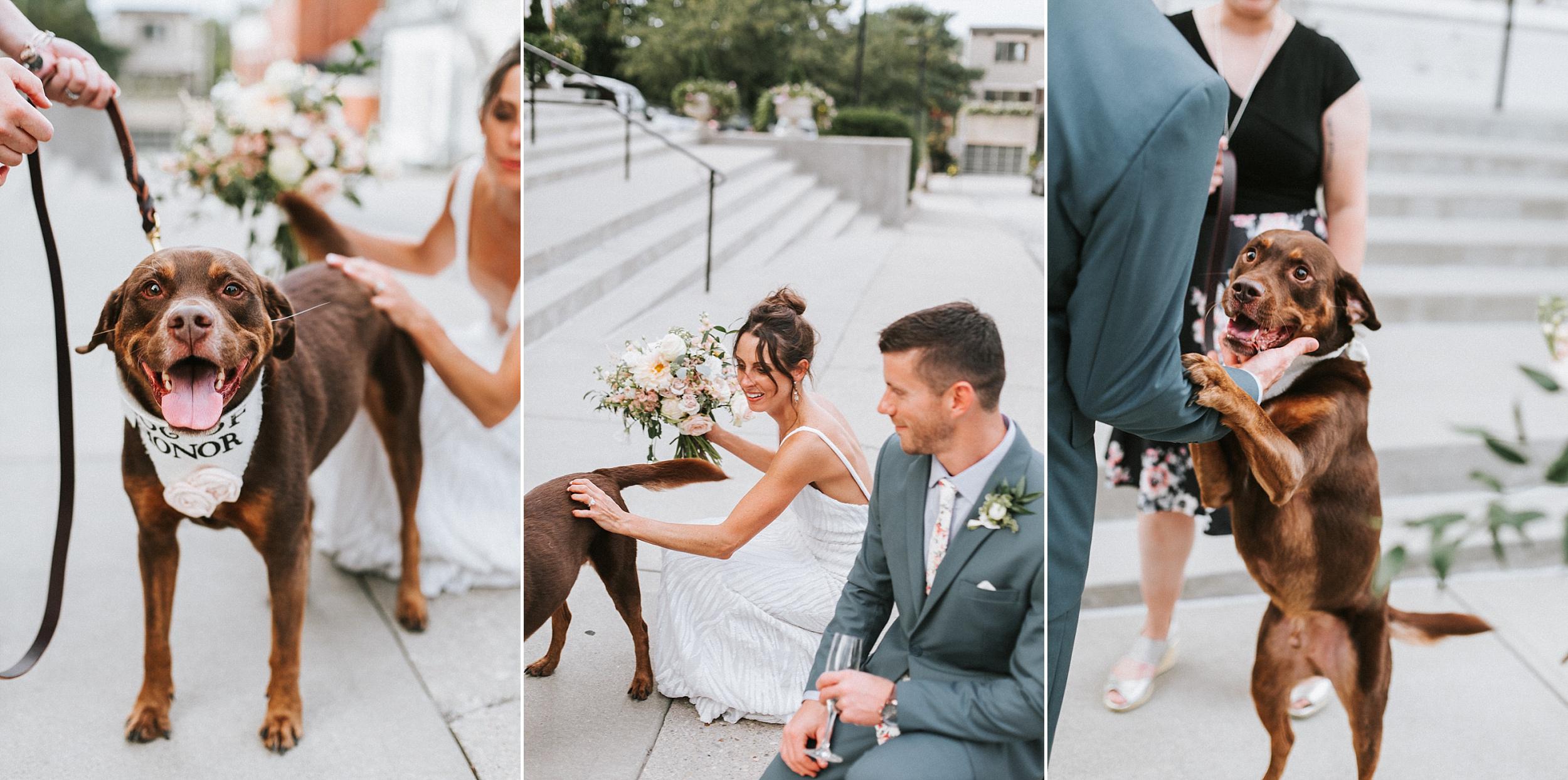 Brooke Townsend Photography - Cincinnati Wedding Photographer (134 of 170).jpg