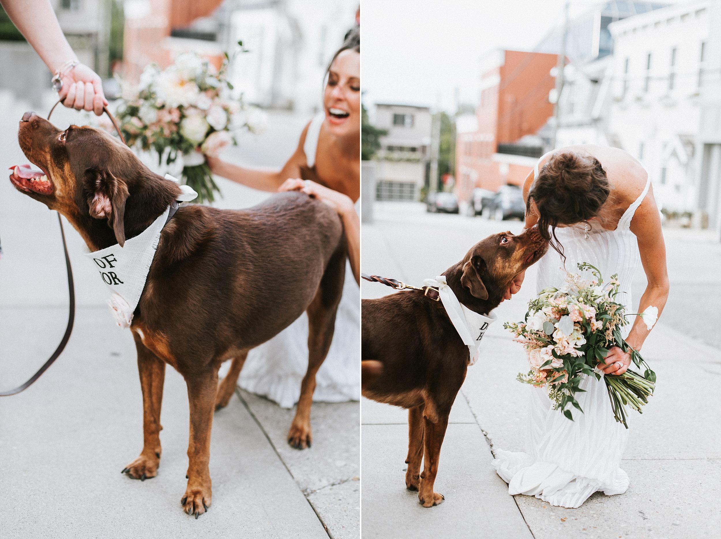 Brooke Townsend Photography - Cincinnati Wedding Photographer (135 of 170).jpg