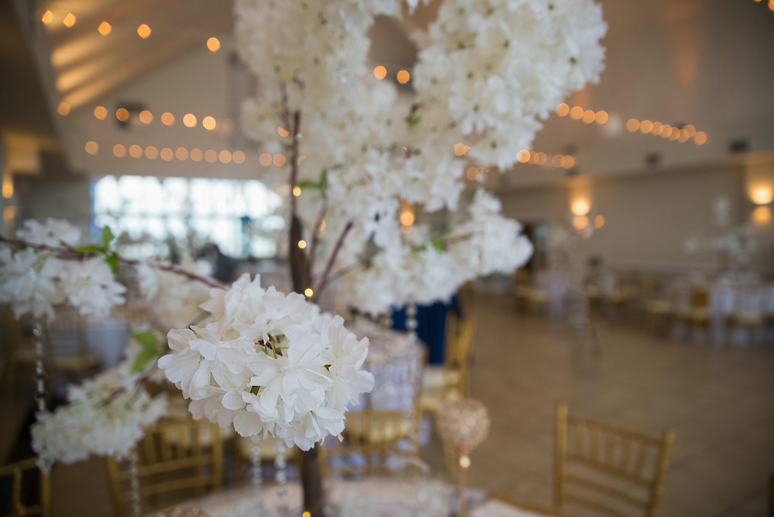 Ivory Hydrangea Trees