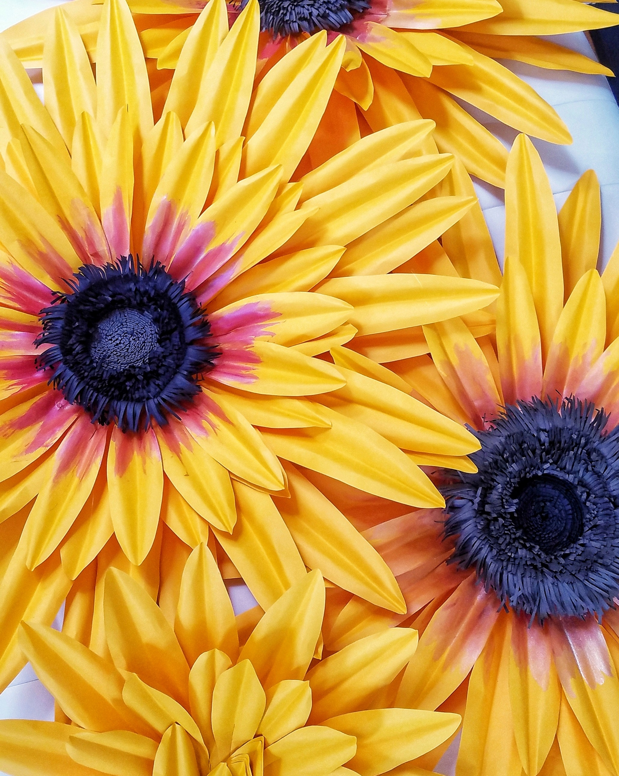 3d Paper Flower Art Workshop Black Eyed Susan Ikamcreate