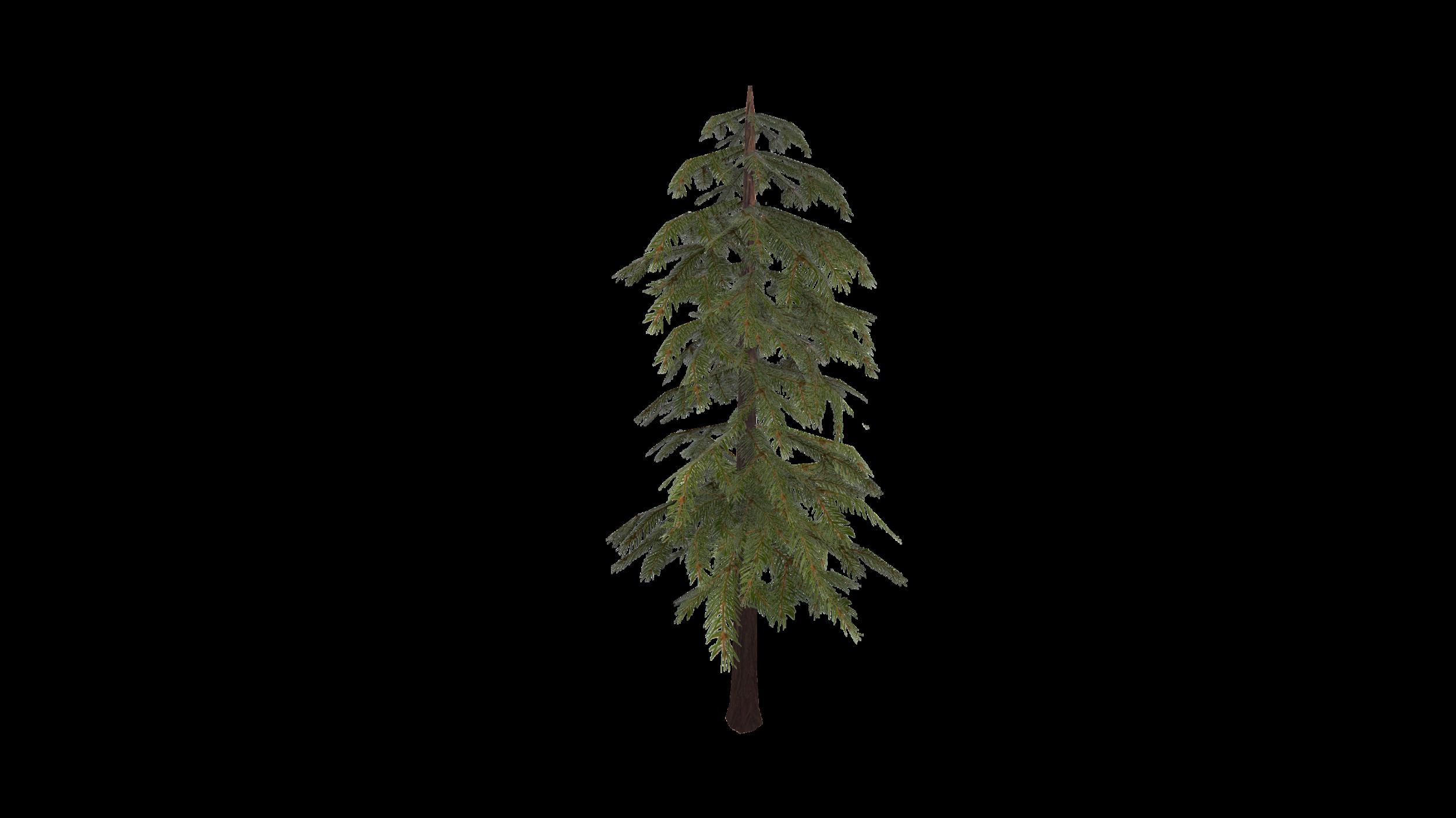 tree_screenshot.png
