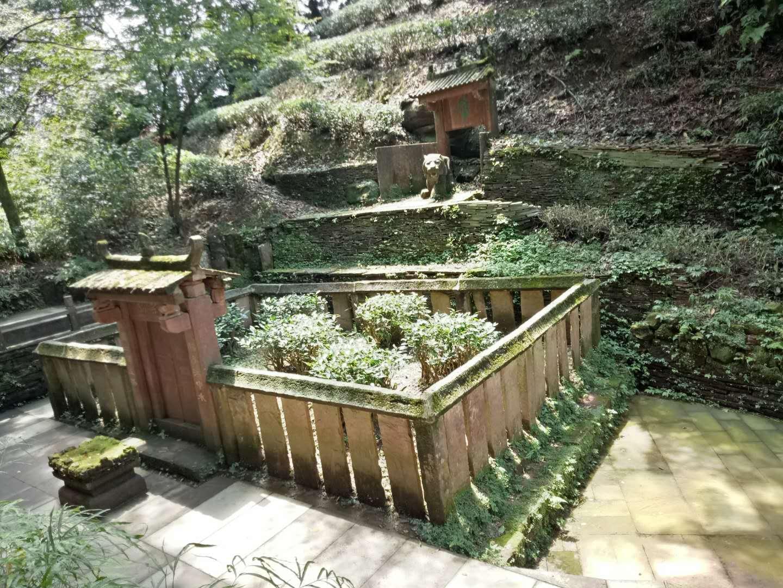 It is said Wu Li Zhen planted the seven tea trees here around 52BC.