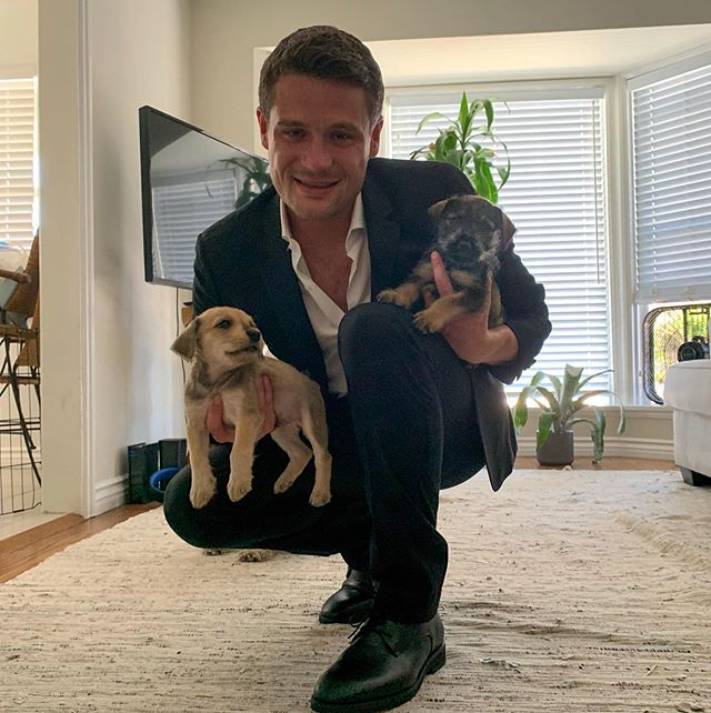 "Hey all! I want to show off the shoes and the puppies. First of all, the shoes are from @useahimsa . They are an all vegan shoe company out of Brazil from an ex-pilot who went vegan after becoming diabetic. He had to quit flying and went back to Brazil to become a shoe maker like his father. The quality of these shoes is outstanding. They have men's and women's shoes for all occasions. I wear these dress shoes (The Edward) when I go out and he has shoes just meant for pilots called ""The James"" Secondly, these puppies were rescued from a backyard breeder in Tijuana with their mother. All 3 were in terrible shape when found especially the mom. They have been cleaned up and are staying with me at my house for a few days. If you would to come see them in person to potentially adopt, just shoot me a DM. We are in Long Beach. 📸 : @mariahdarlene . . . . #puppies #rescuedogs #rescuepuppies #adoptdontshop #dogadoption #adoptapuppy #puppy #vegan #veganshoes #veganmen #veganmenswear #useahimsa #brazil"