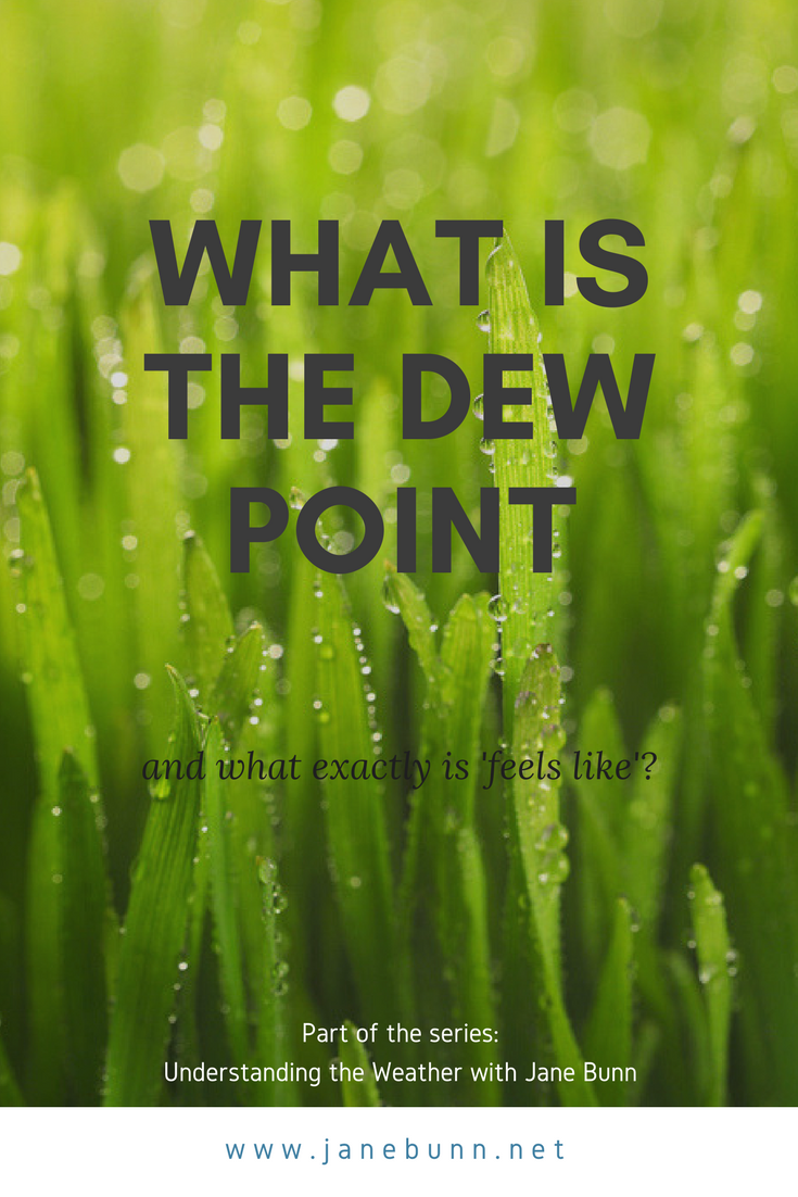 Dew Point and Feels Like.png