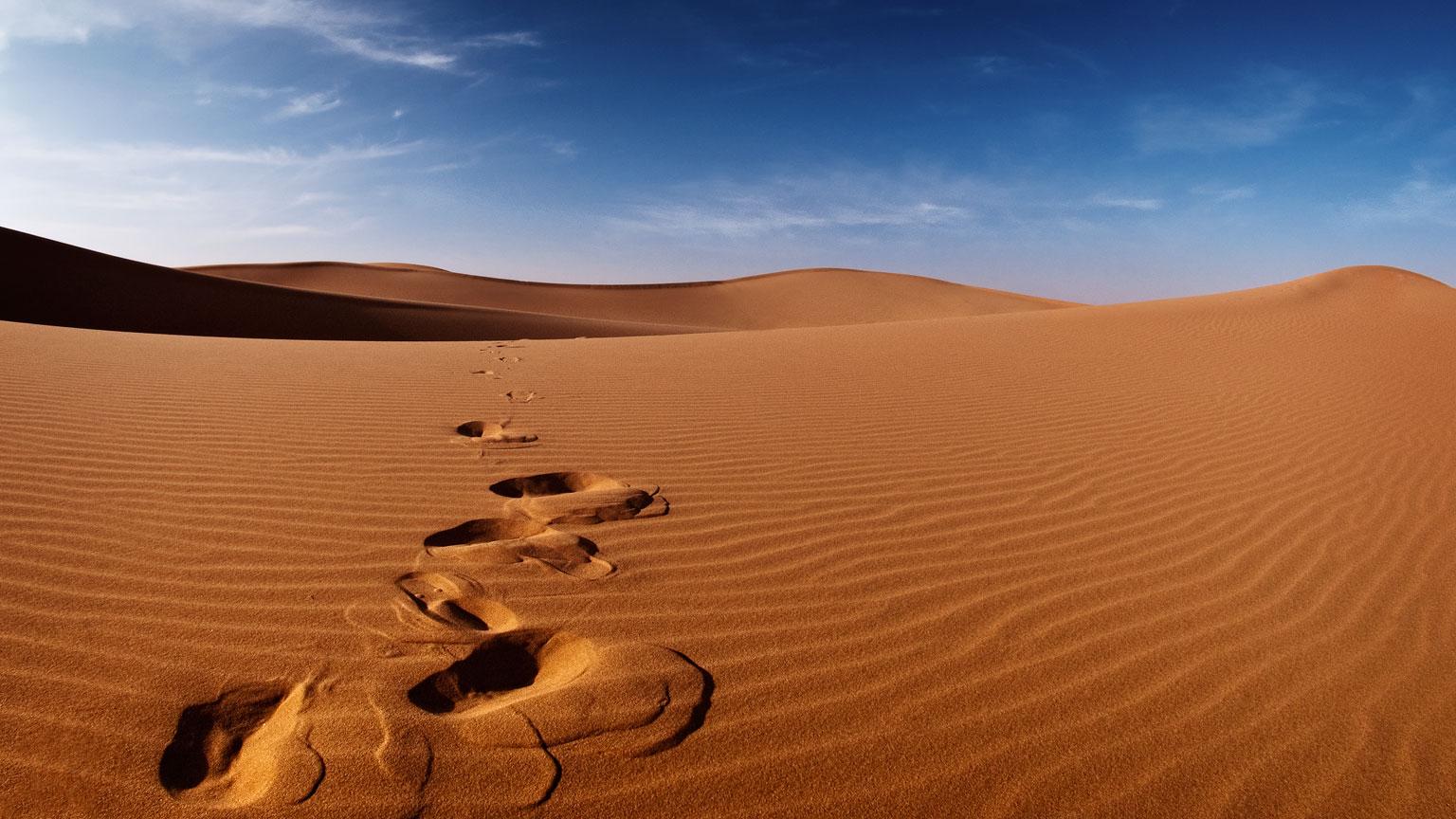 Desert-Tracks.jpg
