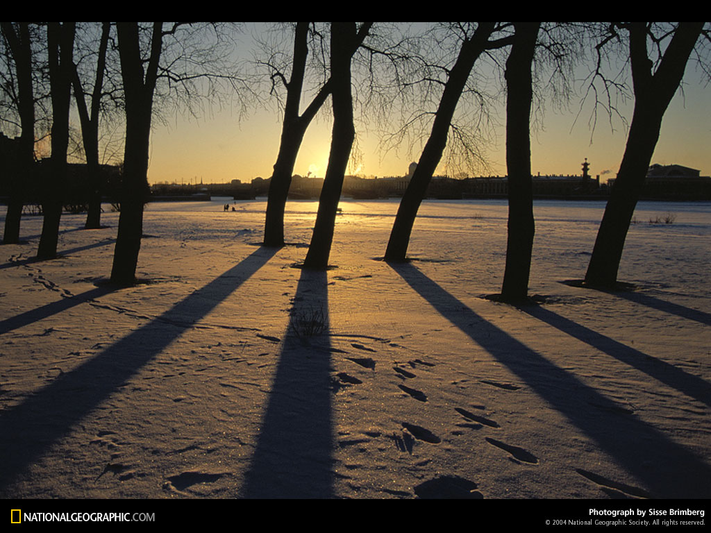 snow-shadows-516720-lw