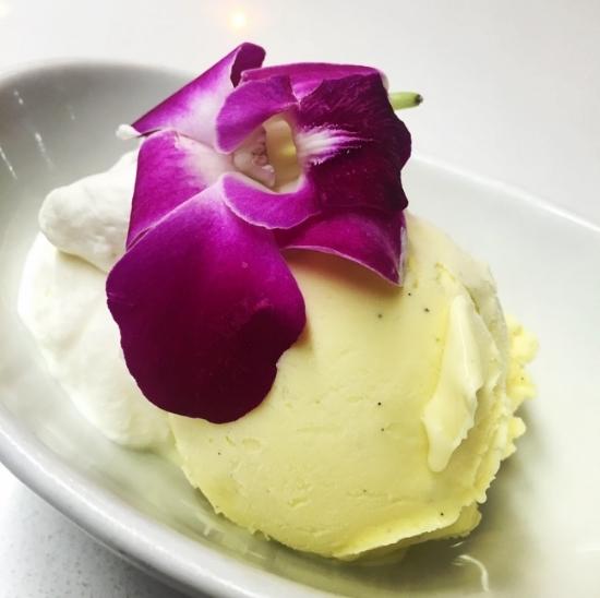 Vanilla Frozen Custard.jpeg