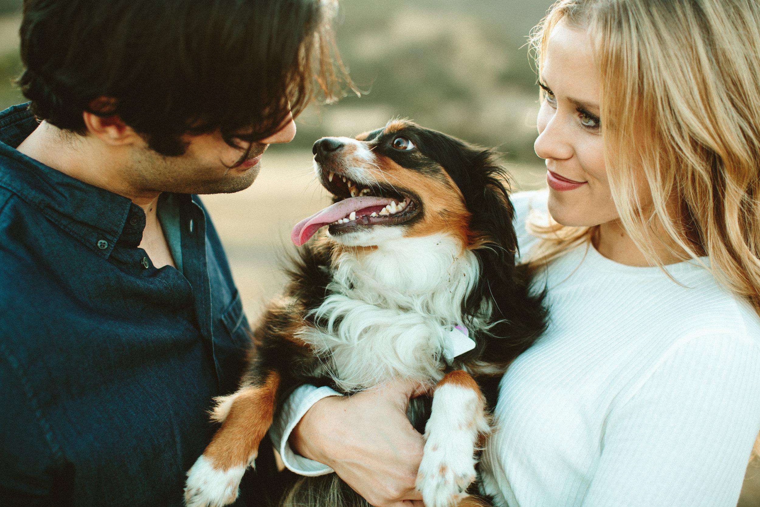 malibu session with dog