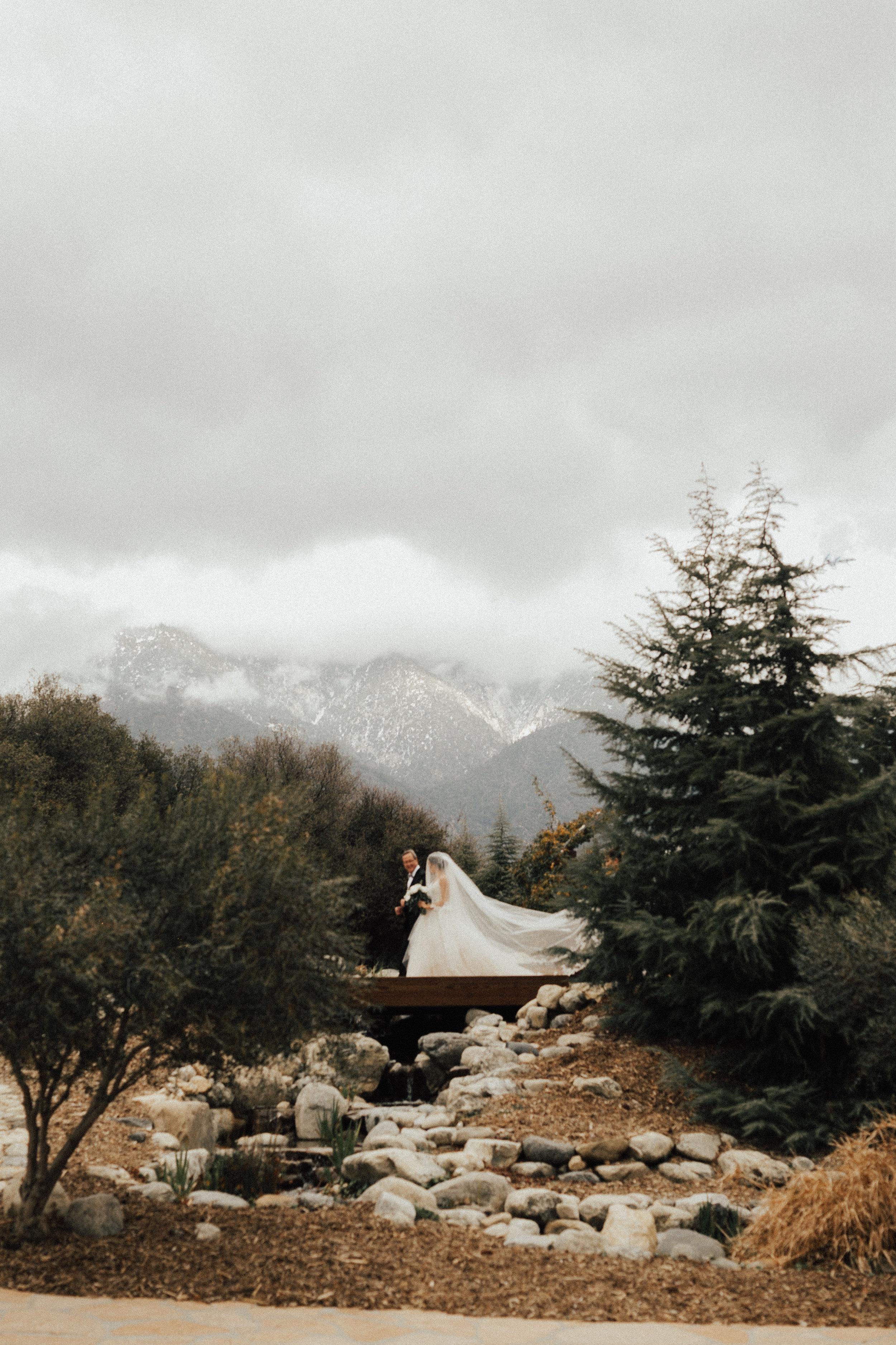 Glen Oak Wedding Photographer