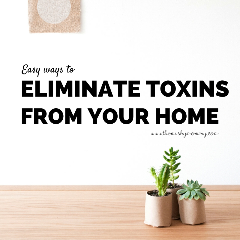 Eliminate Toxins from your home
