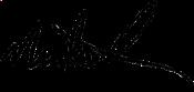 nick_messink_signature