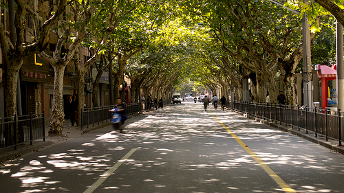 Shanghai French Concession. Photo source: www.forbestravelguide.com