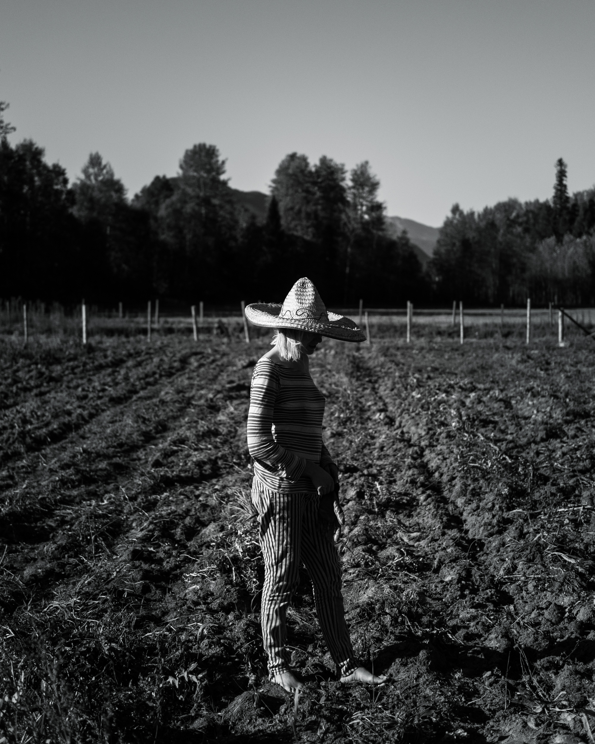 Vince's daughter Amber stands in the potato field during the 2014 harvest. Although her father felt she should be a farmer, from an early age it was clear she was destined to be on stage as an actress. When not helping