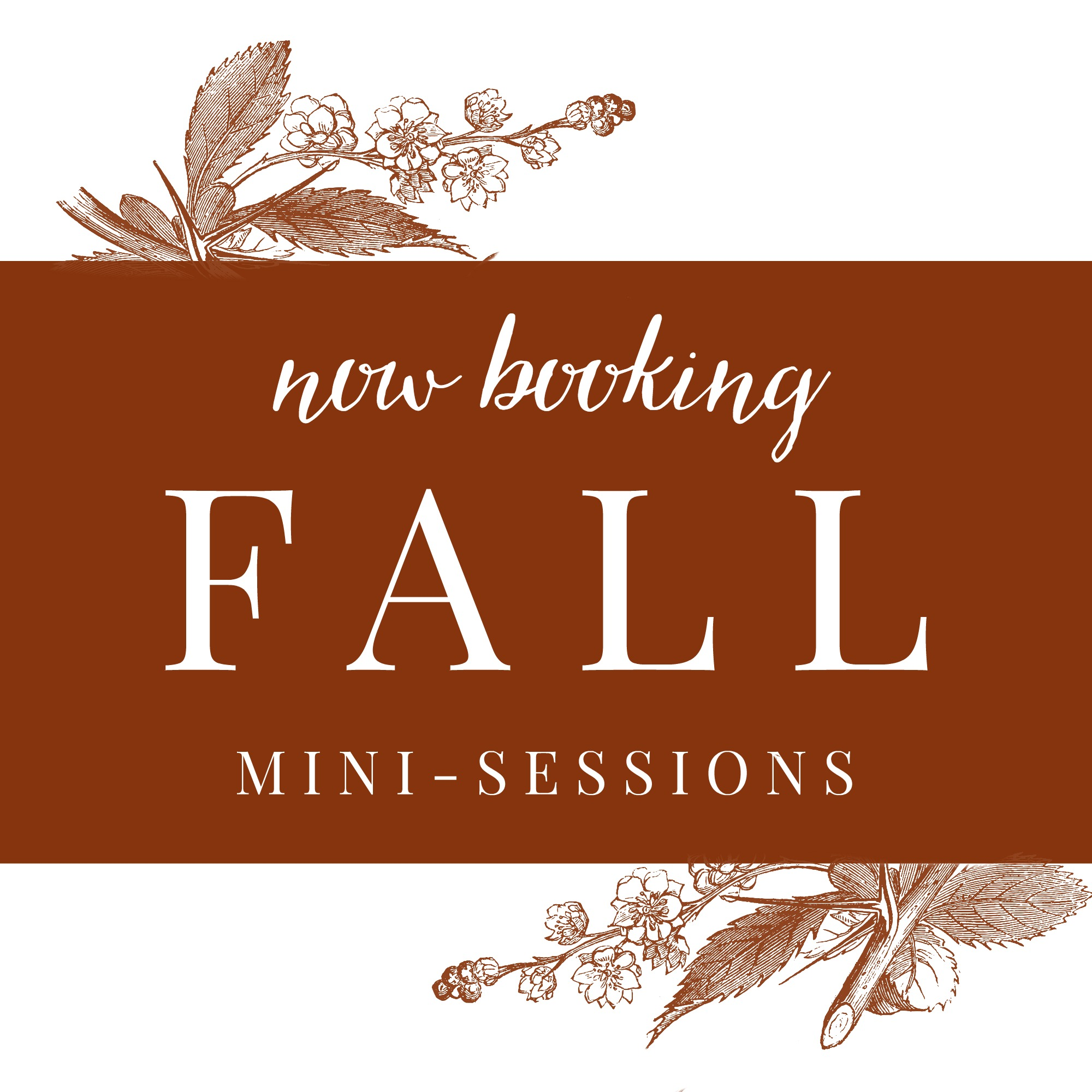 Now booking fall mini-sessions! On Saturday November 5th and November 12th I am holding several 30-minute sessions. $90 for a 30 minute session. You will receive 10 fully-edited high-resolution images both in color and in black and white (20 images total). Email me if you are interested in participating!   Thank you!