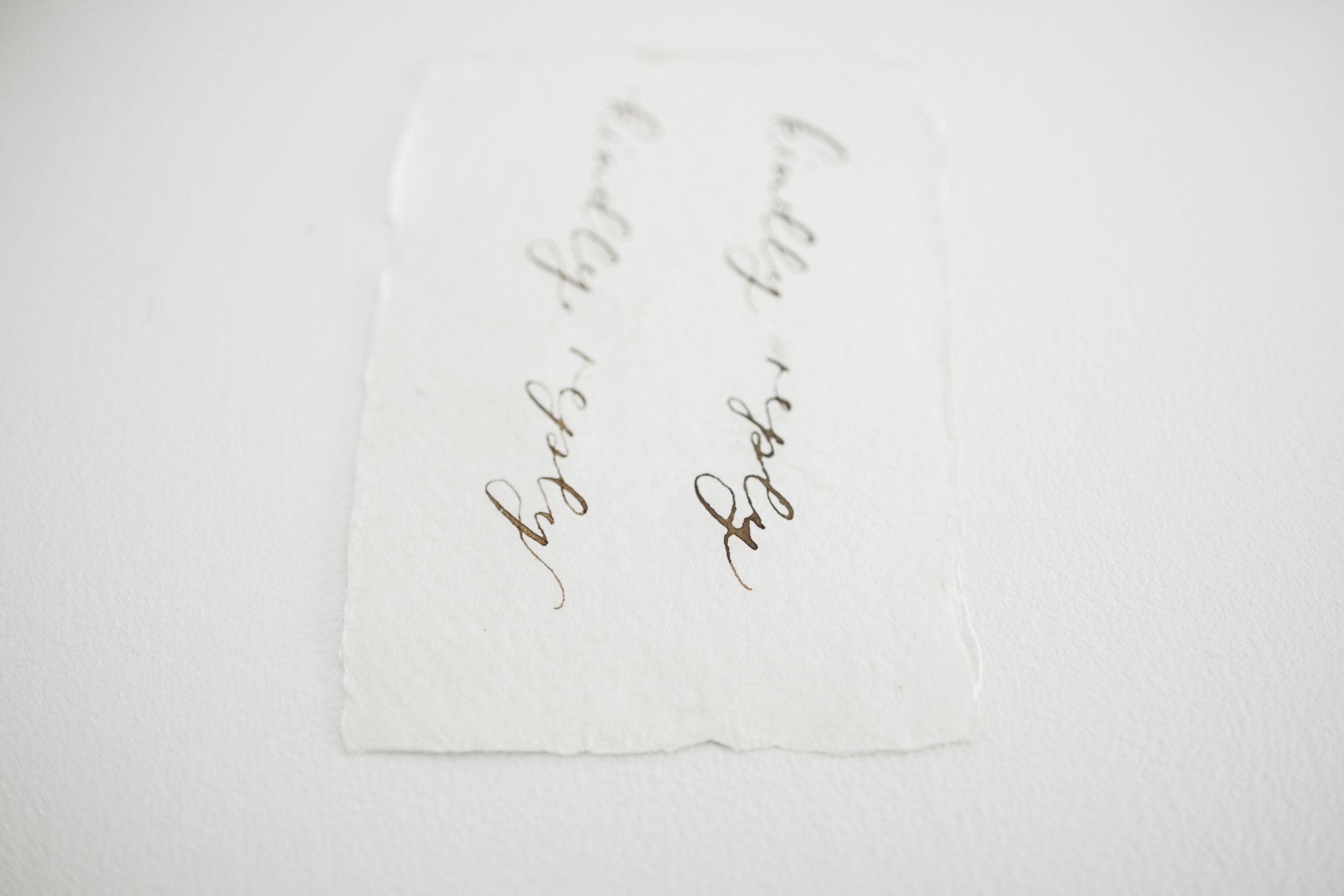 The inscription on the left is  Daniel Smith Walnut Ink  mixed with gum arabic. The right is straight out of the container.