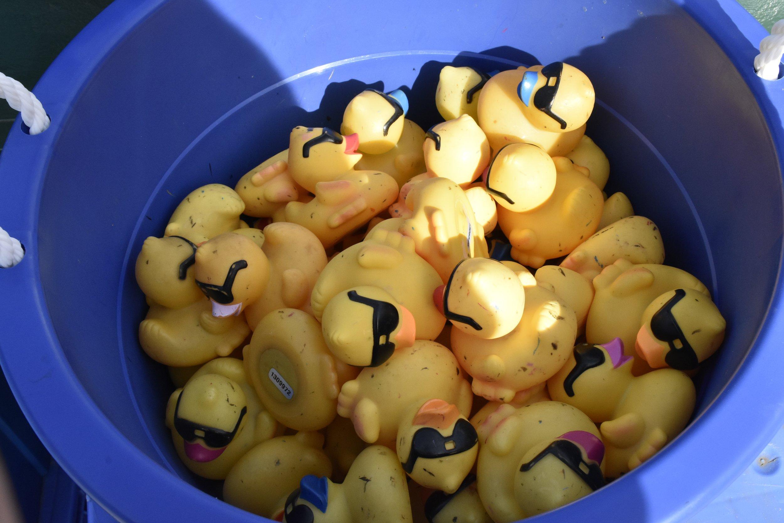 2016 Duck Derby - 4 of 25.jpg