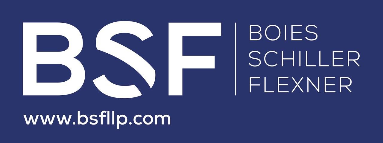 BSF logo.jpg