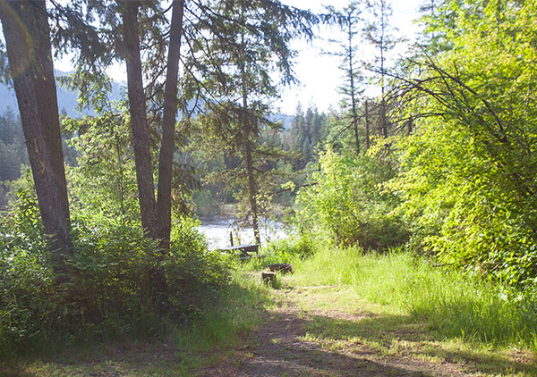 """Tenting site #4 - """"The Cubby"""" overlooking the Kettle River"""