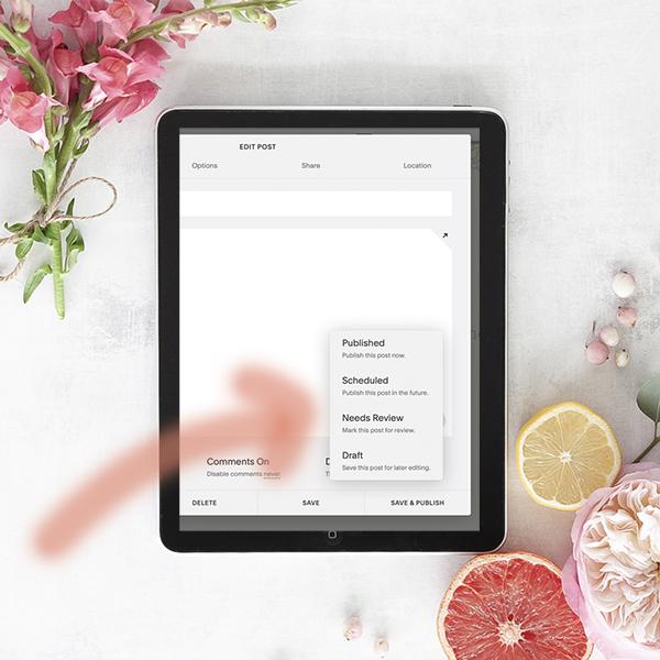 Você pode publicar automaticamente, agendar (schedule) ou deixar na opção rascunho (draft)
